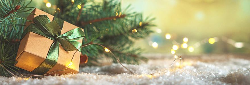 cadeaux écologiques